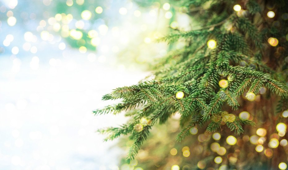 Najlepsze życzenia na Święta!